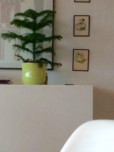 Ikea bestå finurlige fund genbrugshjem retro